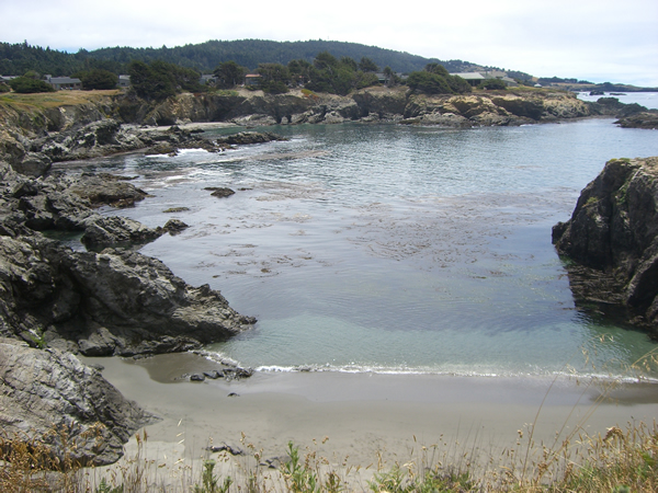 Beautiful walk along Sea Ranch coast.