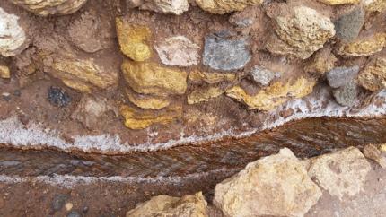 A closeup, note the salt along the edges
