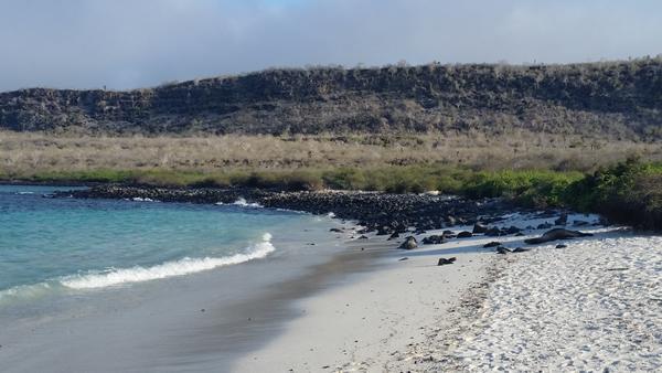 Santa Fe Island landing spot