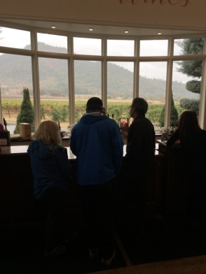 View from inside the tasting room