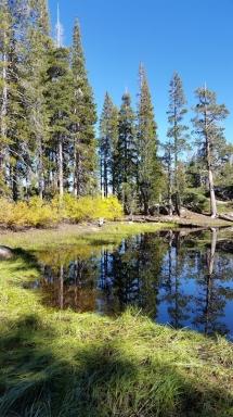 Lake at the tip
