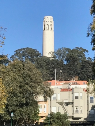 Coit Tower view from Washington Square Park
